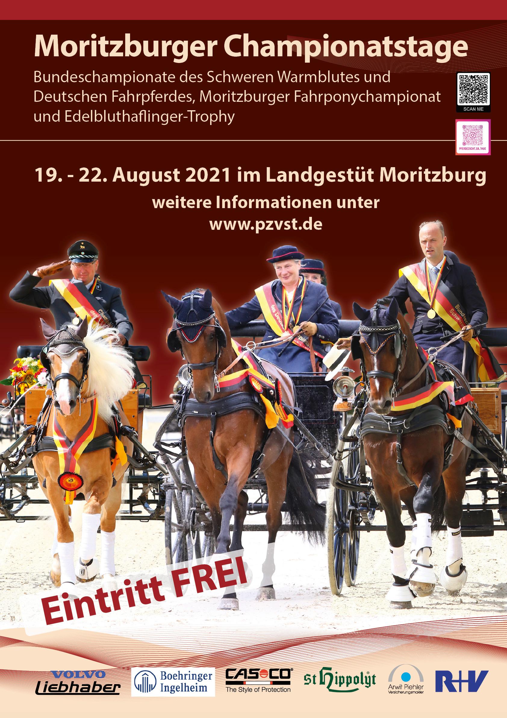 Bundeschampionat Moritzburg 2021